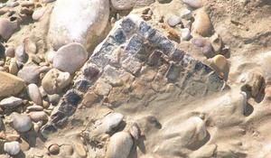 La Diputación interviene en la mejora del yacimiento arqueol ...