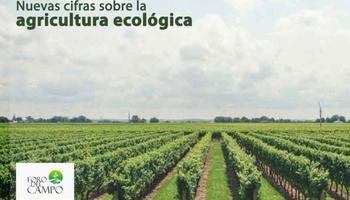 El informe sobre la Producción Ecológica 2018-2020, tema a d ...